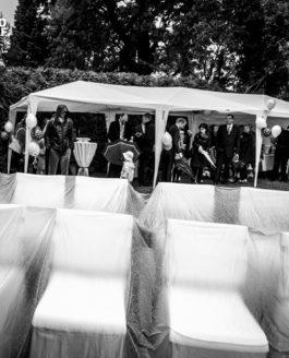 Svatební fotografie z deštivé ZOO