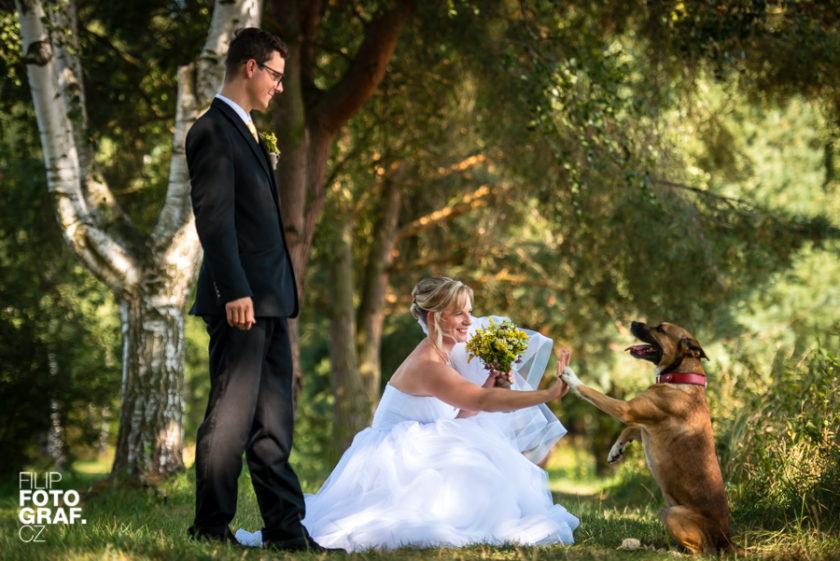 Svatební fotografie Veroniky a Michala